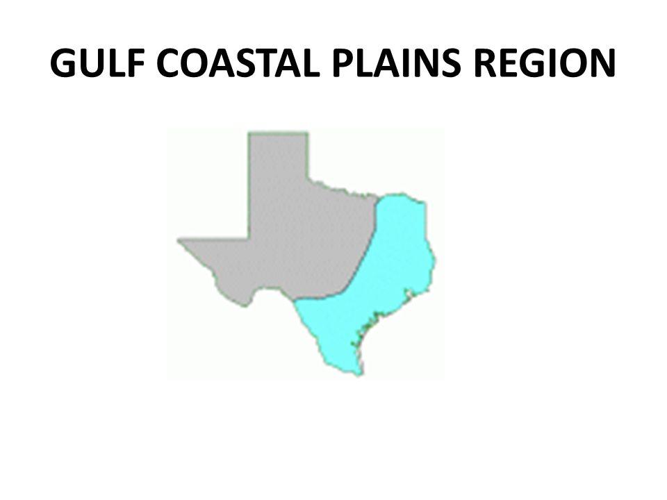 GULF COASTAL PLAINS REGION