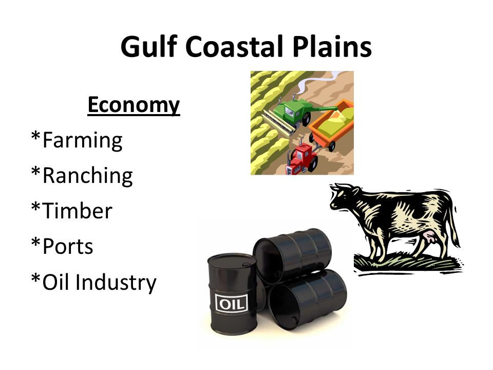 Economy *Farming *Ranching *Timber *Ports *Oil Industry