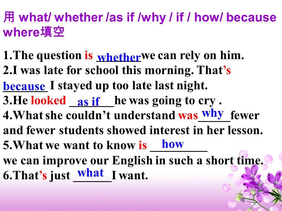 用 what/ whether /as if /why / if / how/ because