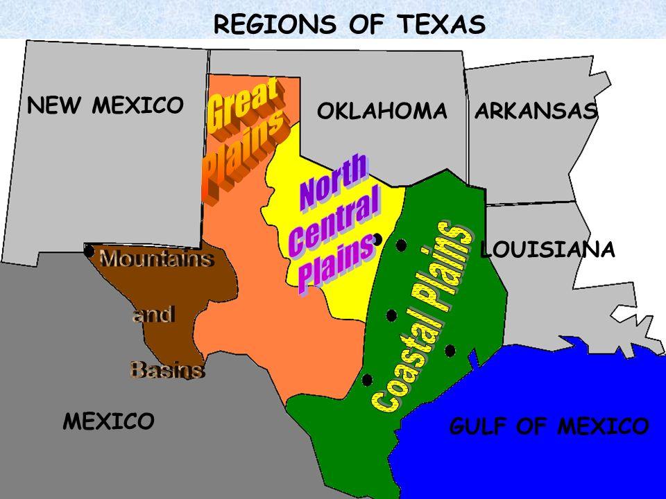 Great Plains Coastal Plains North Central Plains REGIONS OF TEXAS