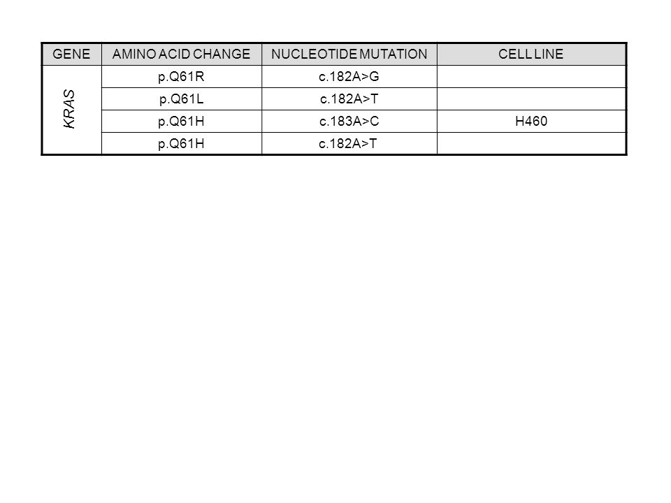 KRAS GENE AMINO ACID CHANGE NUCLEOTIDE MUTATION CELL LINE p.Q61R