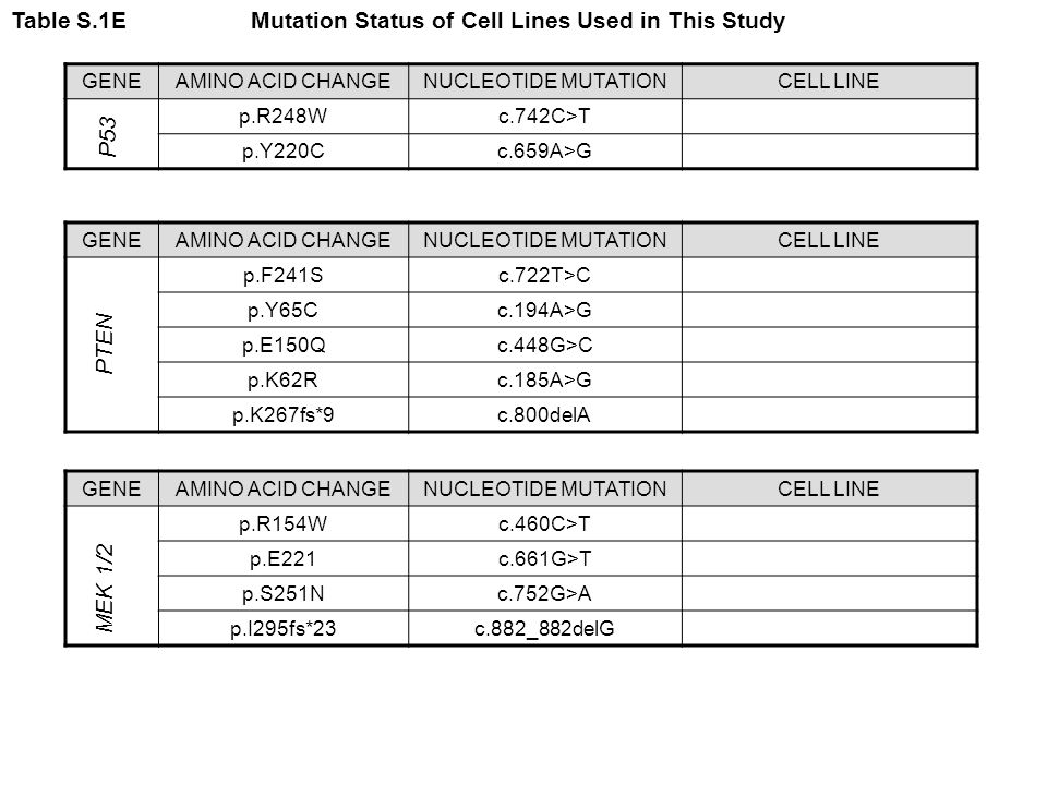 Table S.1E Mutation Status of Cell Lines Used in This Study