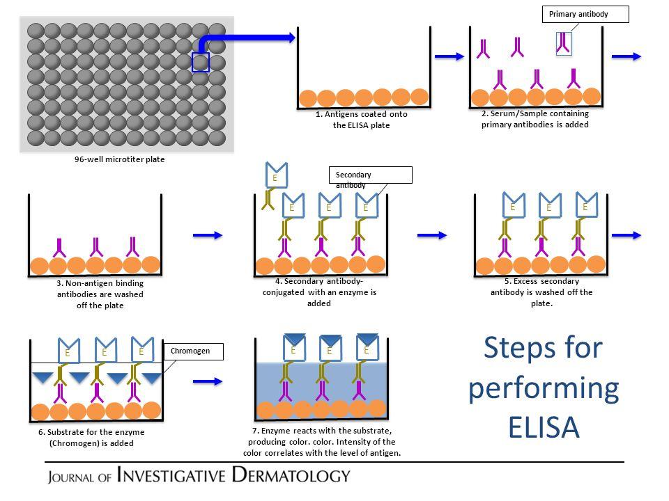 Steps for performing ELISA