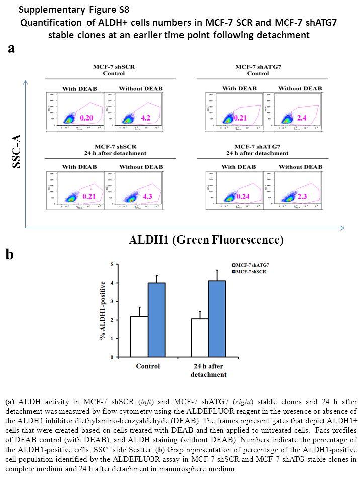 a b SSC-A ALDH1 (Green Fluorescence) Supplementary Figure S8