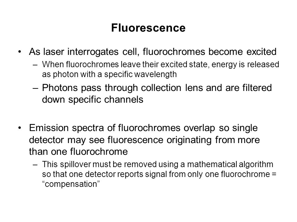 Fluorescence As laser interrogates cell, fluorochromes become excited