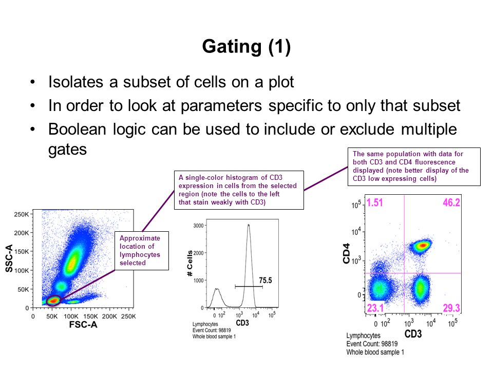 Gating (1) Isolates a subset of cells on a plot