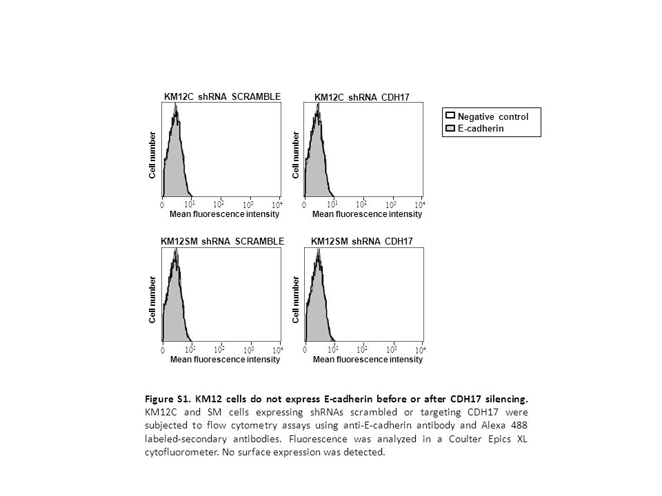 KM12C shRNA SCRAMBLE KM12C shRNA CDH17. Negative control. E-cadherin. Cell number. Cell number.