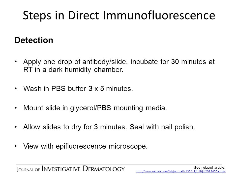 Steps in Direct Immunofluorescence