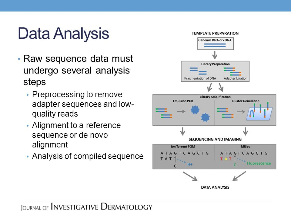 Data Analysis Raw sequence data must undergo several analysis steps