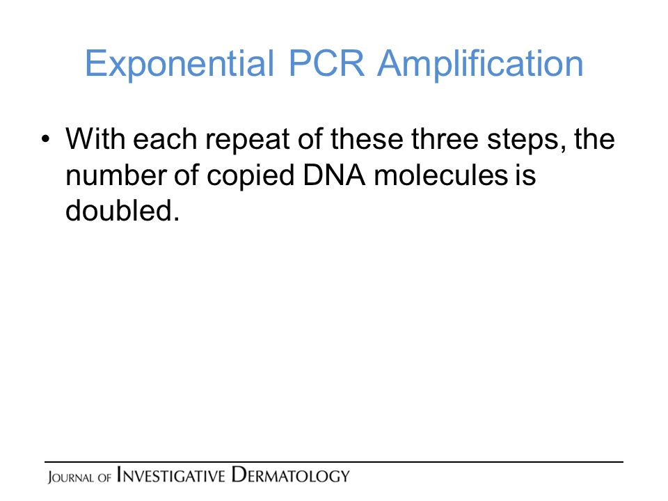 Exponential PCR Amplification