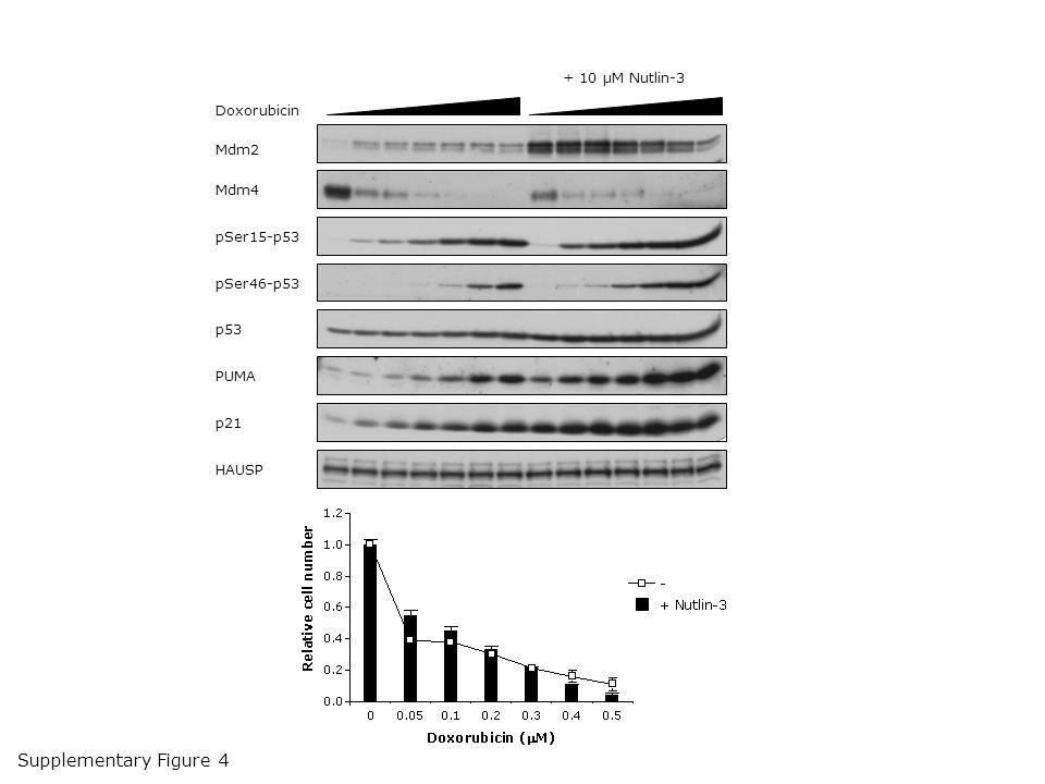 Supplementary Figure 4 + 10 µM Nutlin-3 Doxorubicin Mdm2 Mdm4