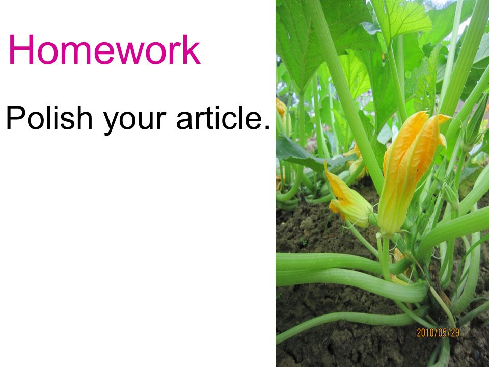 Homework Polish your article.