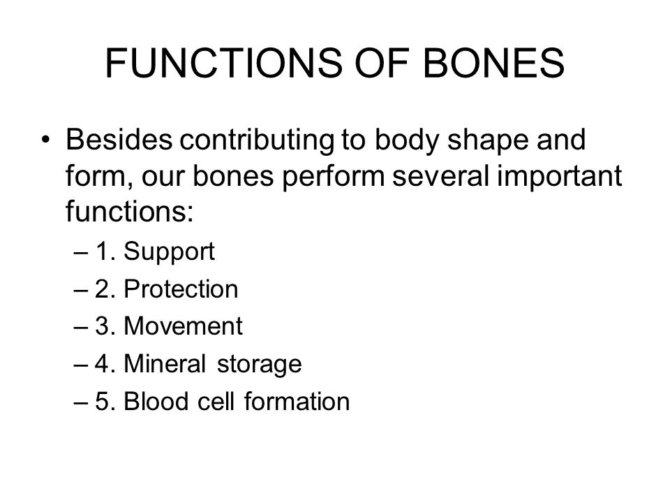 FUNCTIONS OF BONES Besides contributing to body shape and form, our bones perform several important functions: