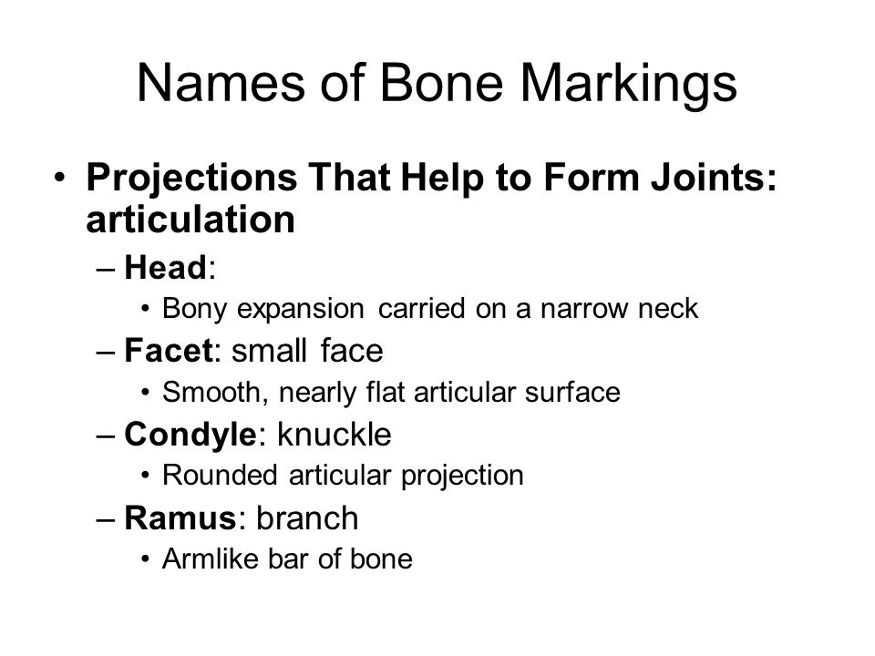 Names of Bone Markings Projections That Help to Form Joints: articulation. Head: Bony expansion carried on a narrow neck.