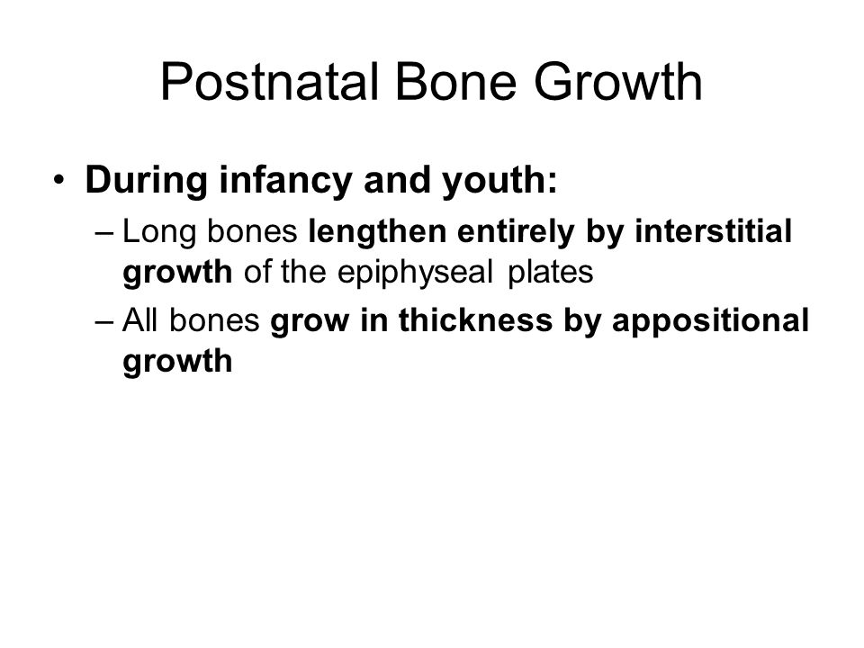 Postnatal Bone Growth During infancy and youth: