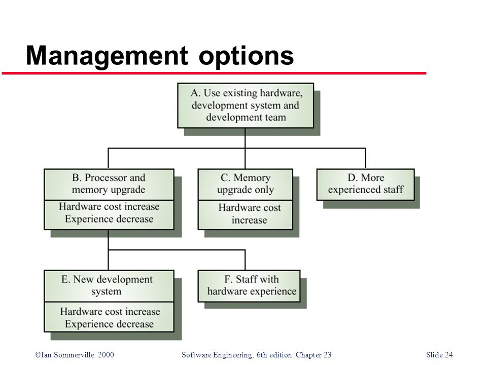 Management options