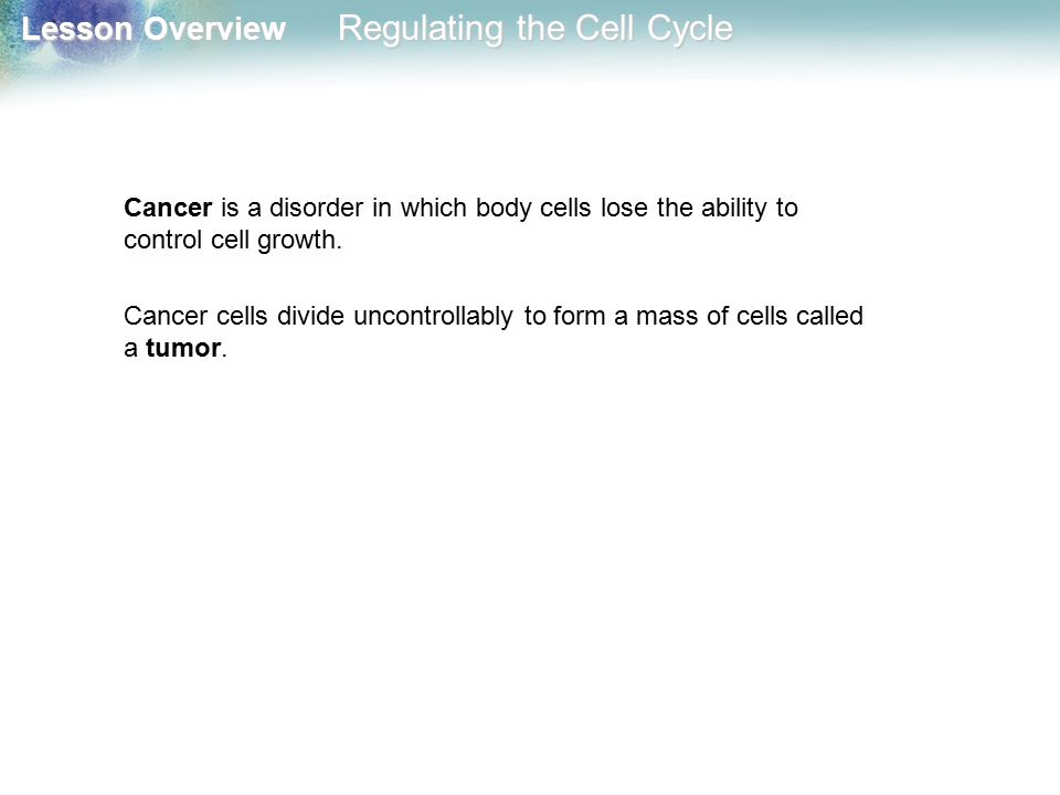 Cancer is a disorder in which body cells lose the ability to control cell growth.