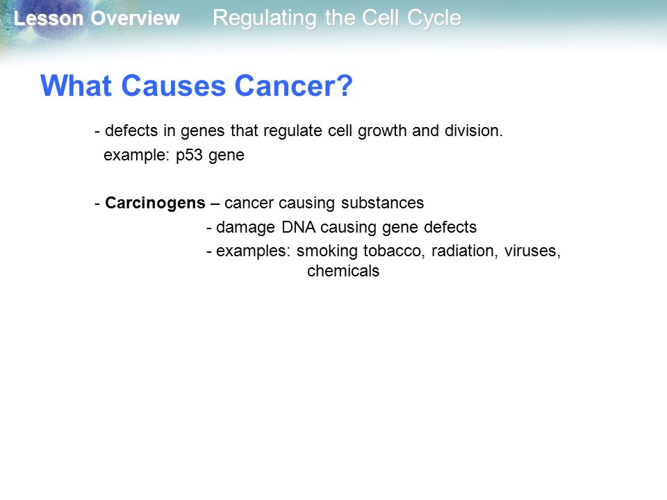 What Causes Cancer - defects in genes that regulate cell growth and division. example: p53 gene. - Carcinogens – cancer causing substances.