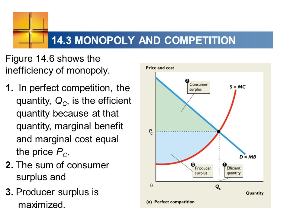 14.3 MONOPOLY AND COMPETITION