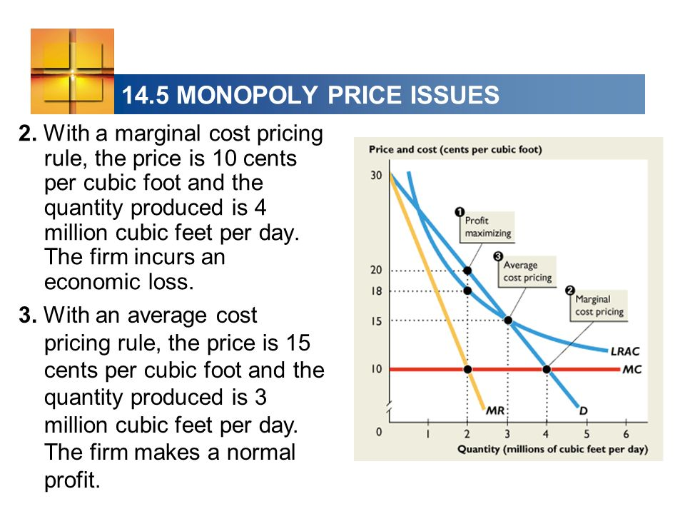 14.5 MONOPOLY PRICE ISSUES