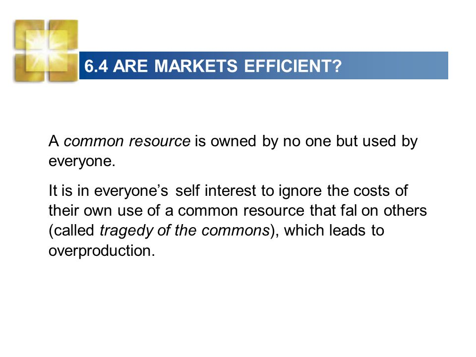 6.4 ARE MARKETS EFFICIENT A common resource is owned by no one but used by everyone.