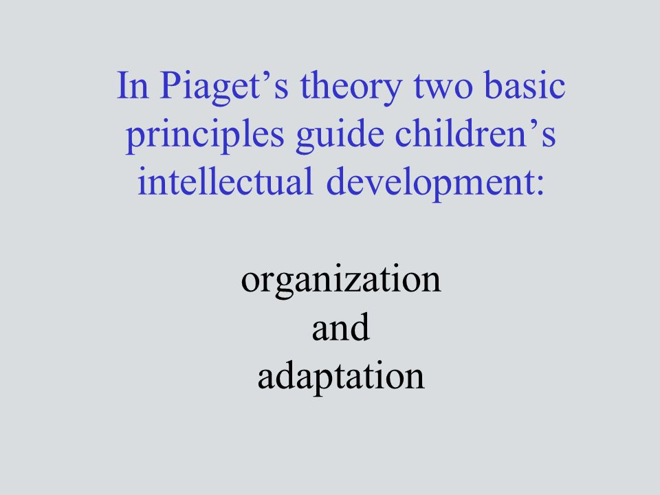 In Piaget's theory two basic principles guide children's intellectual development: organization and adaptation