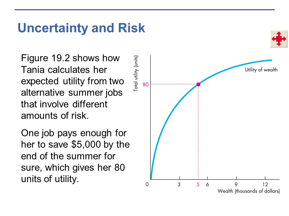 Uncertainty and Risk