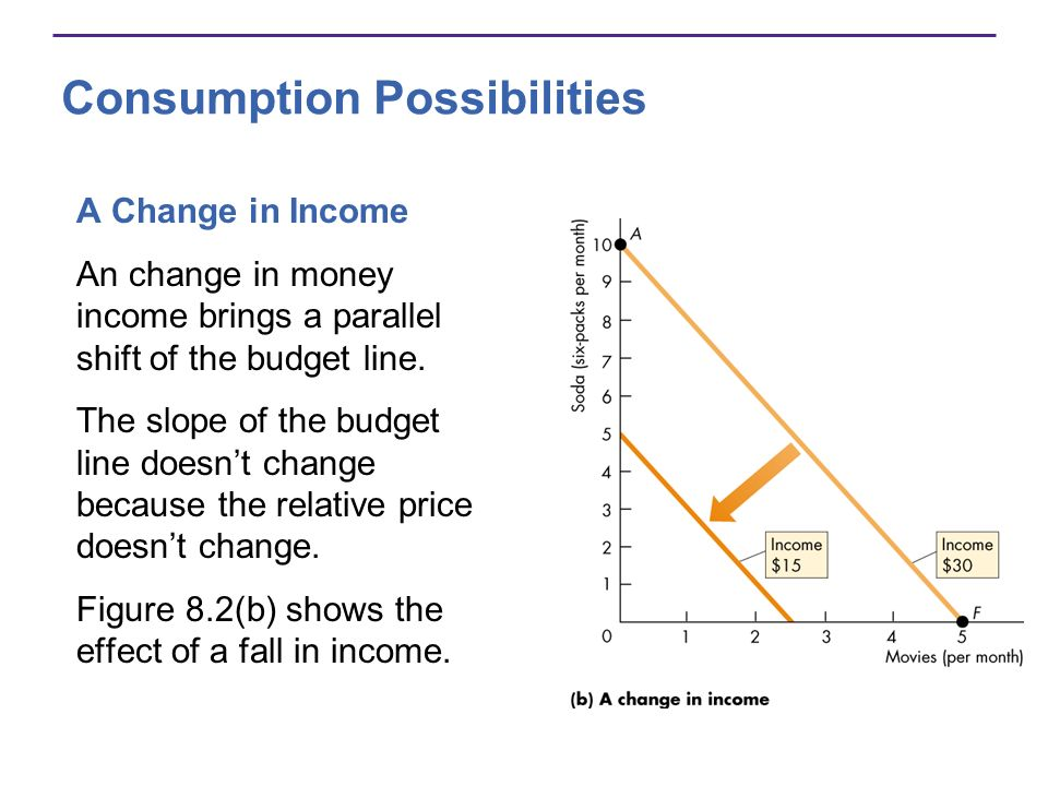 Consumption Possibilities
