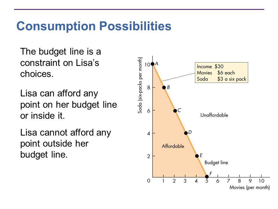 Consumption Possibilities