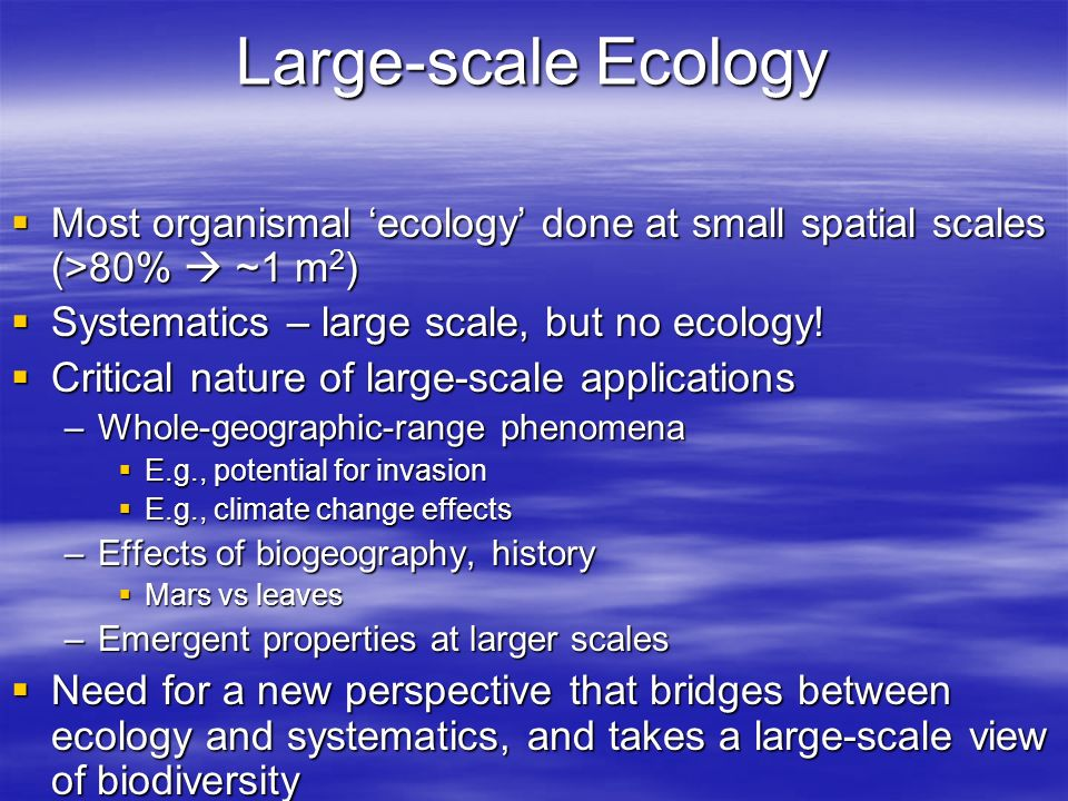 Large-scale Ecology Most organismal 'ecology' done at small spatial scales (>80%  ~1 m2) Systematics – large scale, but no ecology!