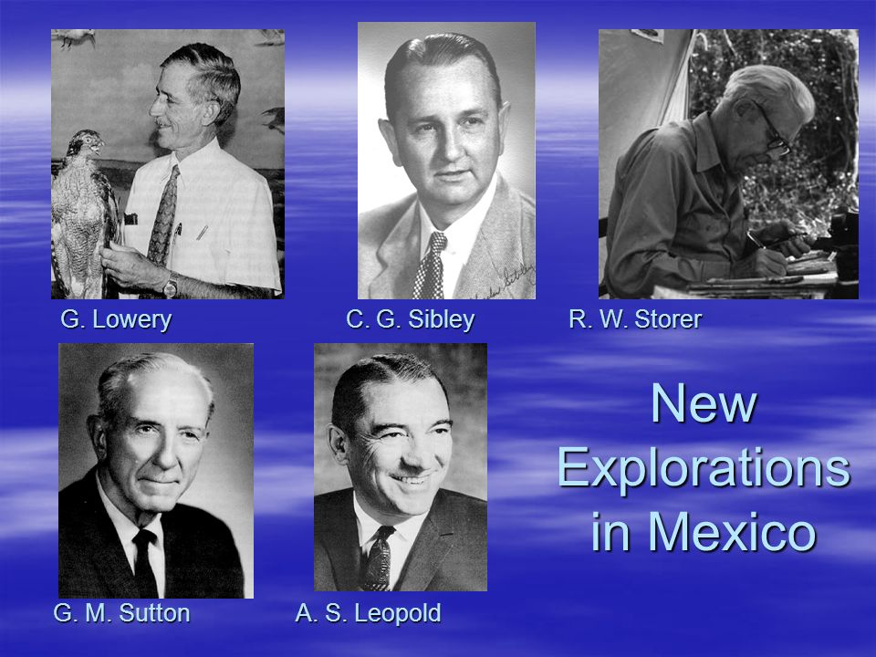 New Explorations in Mexico G. Lowery C. G. Sibley R. W. Storer