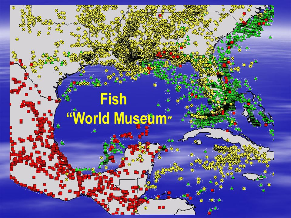 Fish World Museum