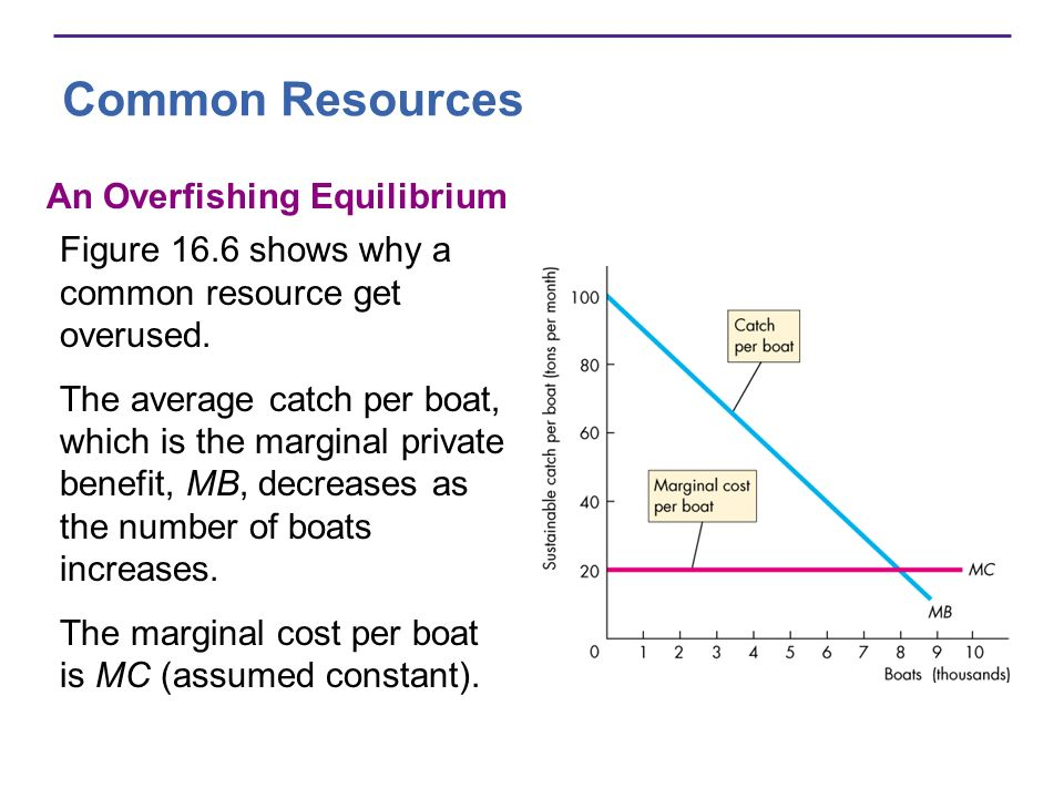 Common Resources An Overfishing Equilibrium