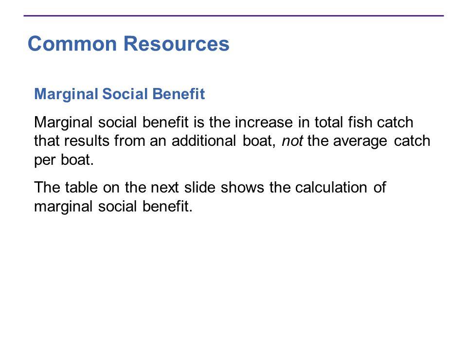 Common Resources Marginal Social Benefit