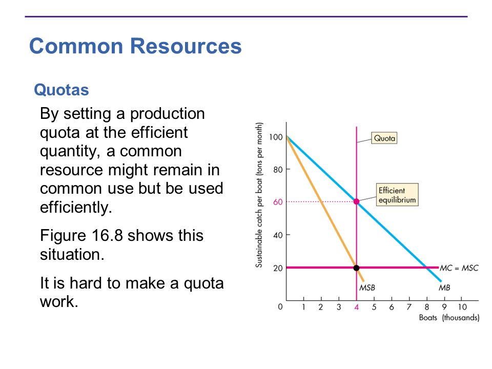 Common Resources Quotas