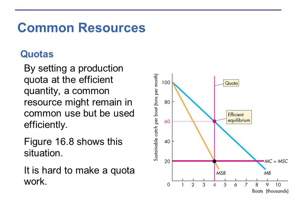 Common Resources Quotas