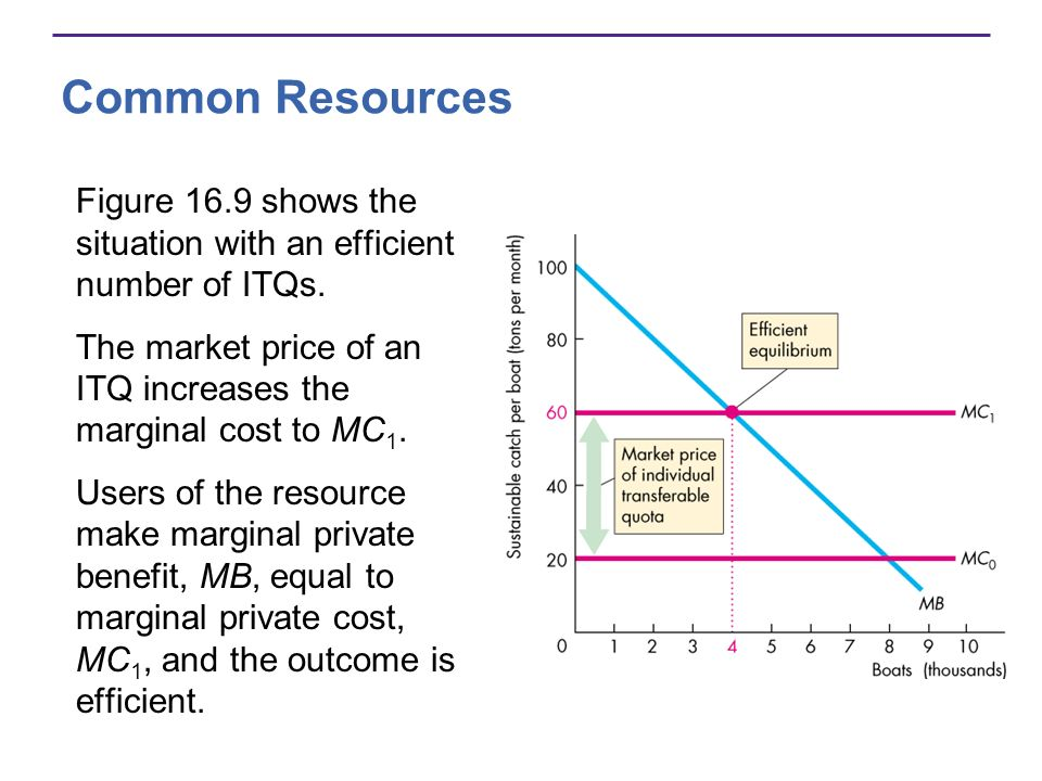 Common Resources Figure 16.9 shows the situation with an efficient number of ITQs. The market price of an ITQ increases the marginal cost to MC1.