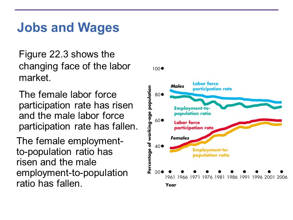 Jobs and Wages Figure 22.3 shows the changing face of the labor market.