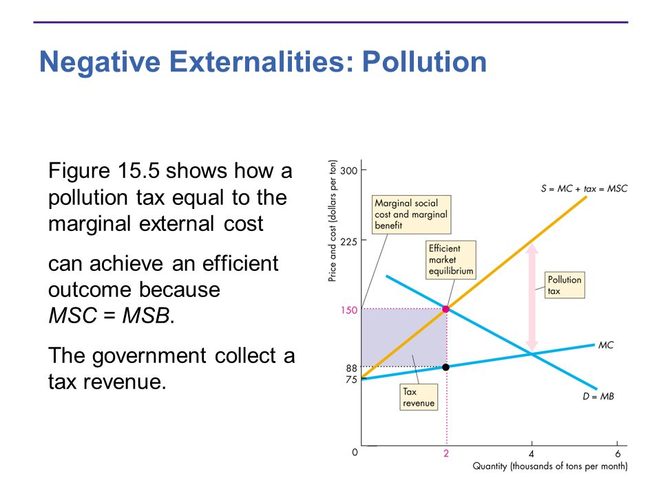 Negative Externalities: Pollution