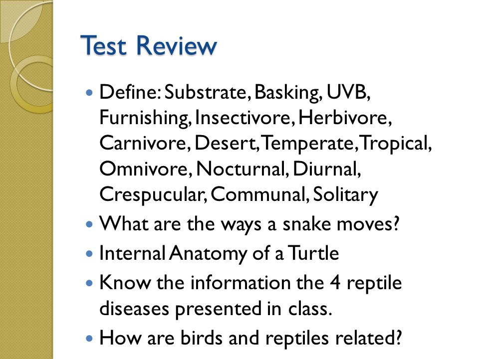 Reptiles Animal Science Level Ppt Video Online Download