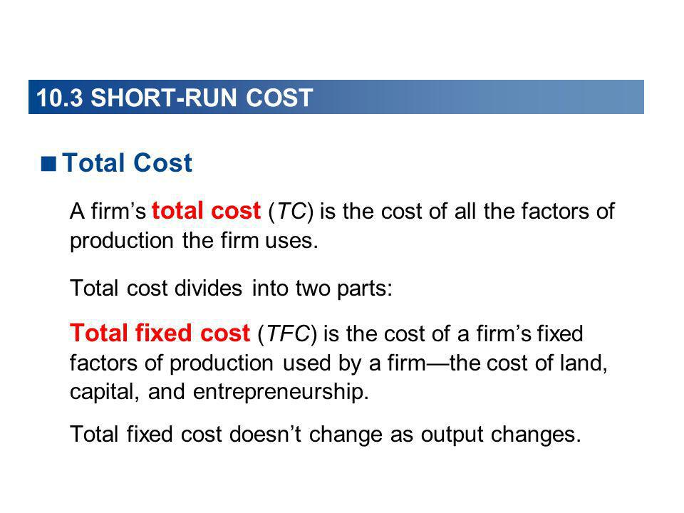 Total Cost 10.3 SHORT-RUN COST
