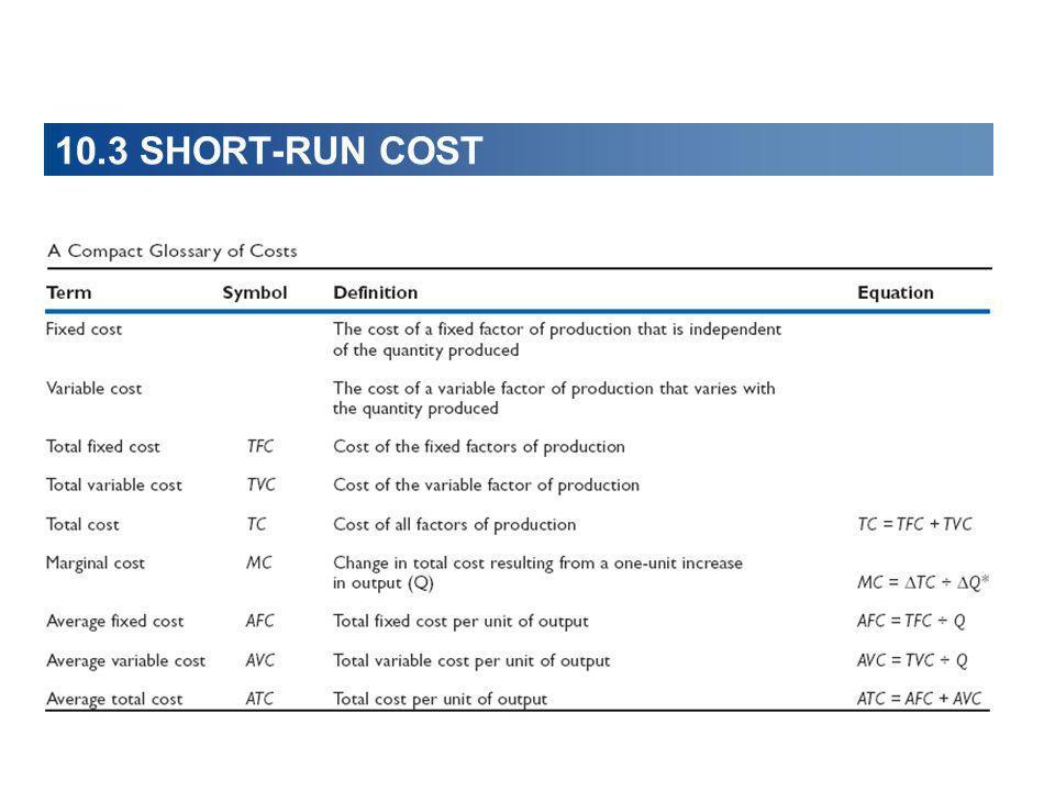 10.3 SHORT-RUN COST