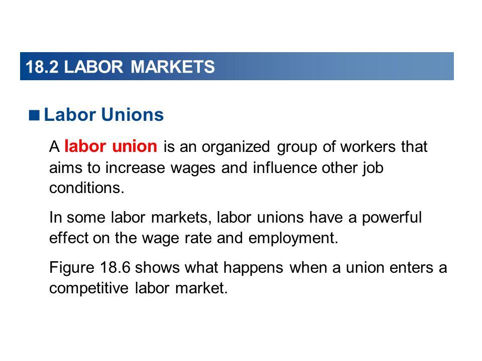 Labor Unions 18.2 LABOR MARKETS