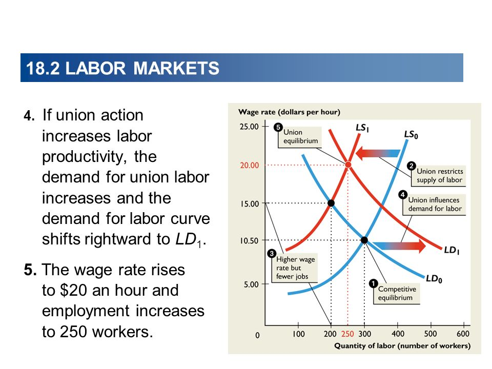 18.2 LABOR MARKETS