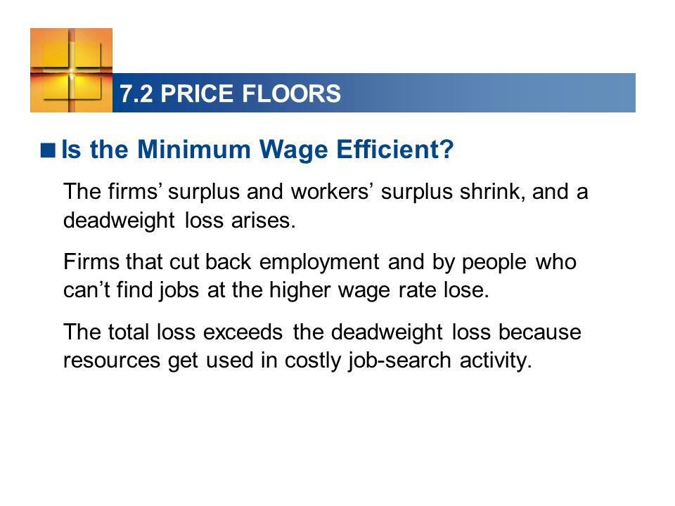 Is the Minimum Wage Efficient