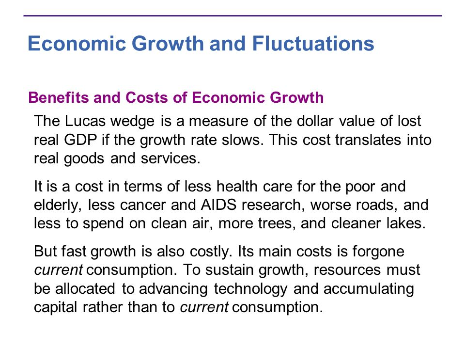 Economic Growth and Fluctuations