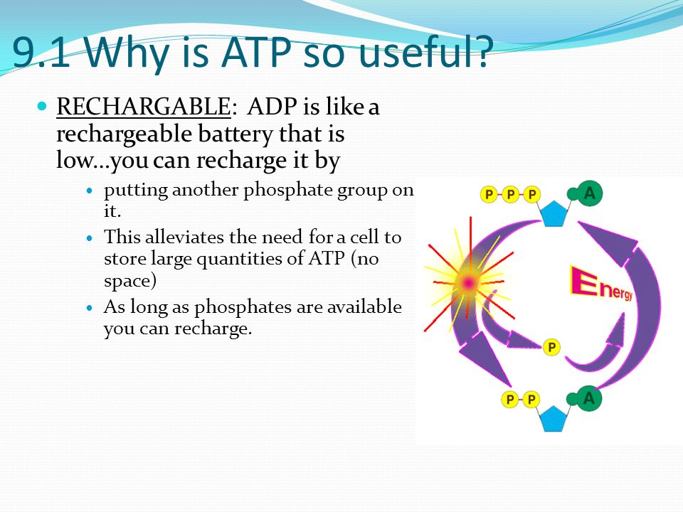 Ch 9 The Need for Energy. - ppt download