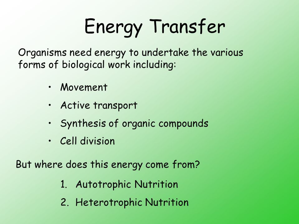 GCSE revision Click the hyperlink to see the movie Photosynthesis ...