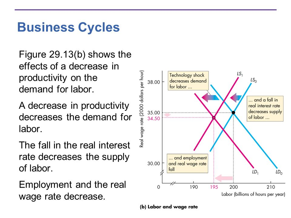 Business Cycles Figure 29.13(b) shows the effects of a decrease in productivity on the demand for labor.