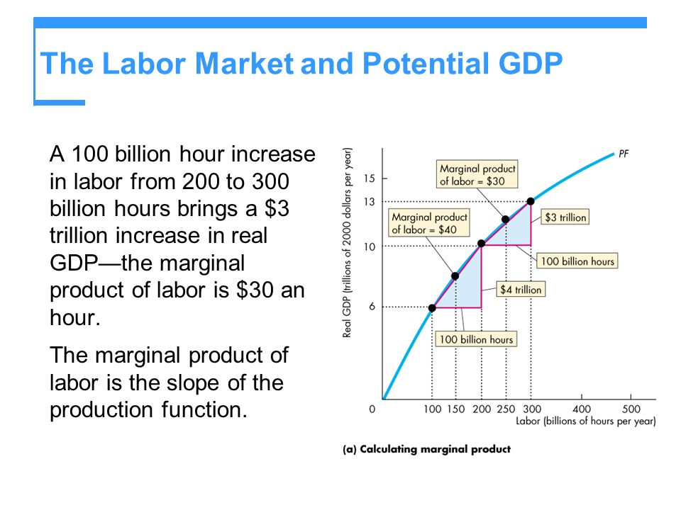 The Labor Market and Potential GDP